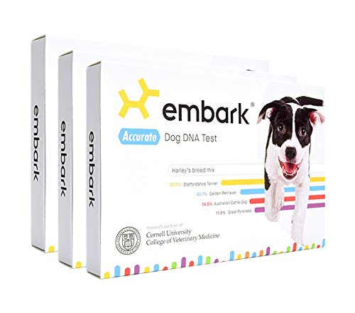 Embark | Dog DNA Test | Breed Identification | 160 Health Results | 200K Genetic Markers | Pack of 3