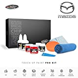 Color N Drive | Mazda 39T - Dolphin Grey Mica Touch Up Paint | Compatible with All Mazda Models | Paint Scratch, Chips Repair | OEM Quality | Exact Match | Pro