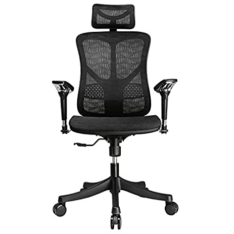 Amazon.com: Argomax Mesh ergonomic office chair (EM-EC001 ...