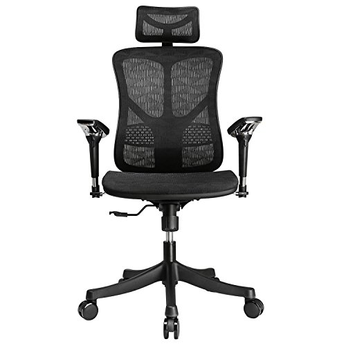 Argomax Mesh ergonomic office chair (EM-EC001) by Argomax