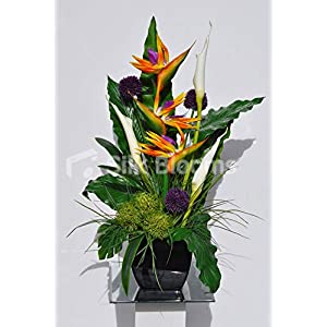 Silk Blooms Ltd Artificial Orange Bird of Paradise and Purple Allium Floral Arrangement w/Goddess Lilies and Black Square Vase 11