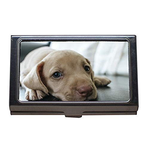 Scoop Pet Case (Business Card Holder Wallet Credit Card ID Case,Dog Puppy Blue Eyes Blue Eye Pet Look Cute,Business Card Case Stainless Steel)
