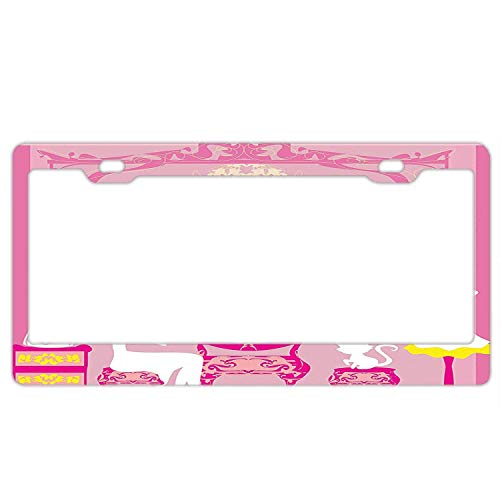 YING XUE License Plate Frame - Lady Sitting in Front French Cosmetic Make-Up Mirror - Car License Plate Holder Tag Soldiers,Firemen