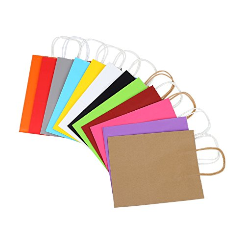 Coloured Paper Gift Bags With Handles - 6