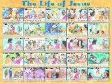 Jesus Wall Chart - Life of Jesus Laminated Chart