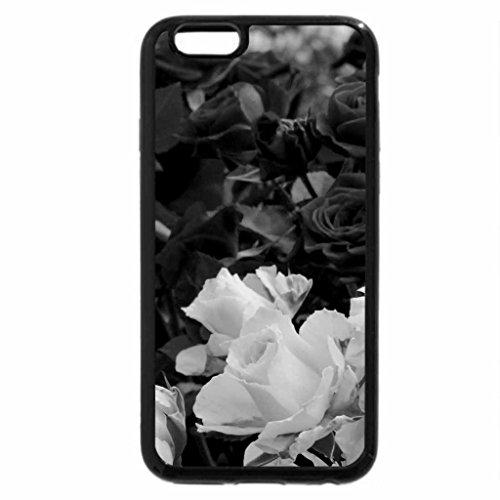 iPhone 6S Plus Case, iPhone 6 Plus Case (Black & White) - VALENTINE ROSES