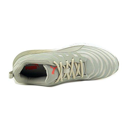 Puma Mens Flare Graphic Running Shoe Cava / Gv / Ps / Bianco / Rb