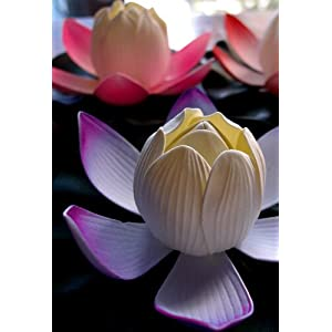 Way Home Fair LED Floating Lily White & Purple 6in 97