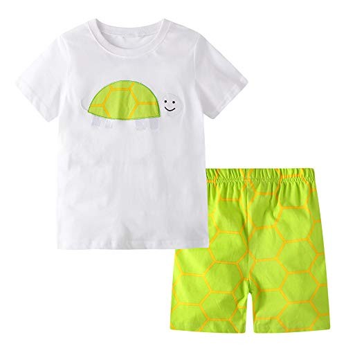 - BIBNice Toddler Boys Summer Pajamas Cotton T-Shirt and Short Sets Turtle 6t