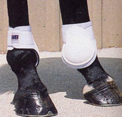 Neoprene Lined Fetlock Boots - Neoprene Lined Fetlock PONY Boots, Black by Roma Costume