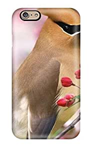 Case Cover Attractive Sweet Cute Bird/ Fashionable Case For Iphone 6