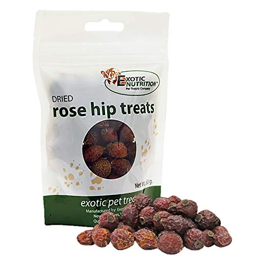 Exotic Nutrition Dried Rose Hips 4.2 oz. - Healthy Treat for Prairie Dogs, Chinchillas, Squirrels, Degus, Sugar Gliders and Other Small Animals