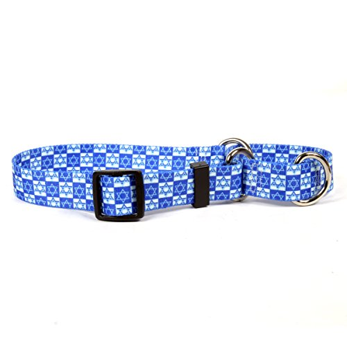 Hanukkah Dog Collar - Yellow Dog Design Hanukkah Stars Martingale Dog Collar 3/4