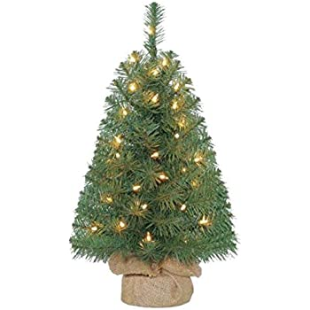 Amazon.com: 2ft Pre-Lit Noble Fir Green Artificial ...