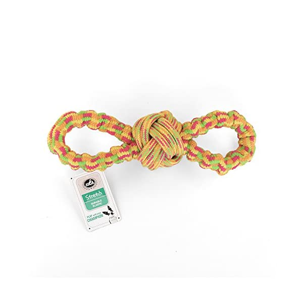 Pet Champion Interactive Stretchy Figure Eight Loop Dog Rope Toy Orange Medium 2