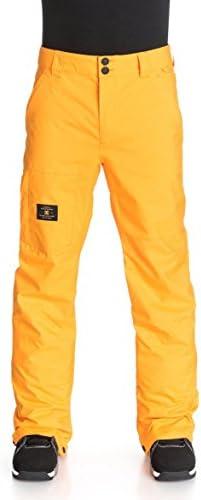 DC Dealer Snowboard Pants Mens