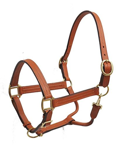 Showman Leather Horse Size Halter with Brass Hardware (Light)