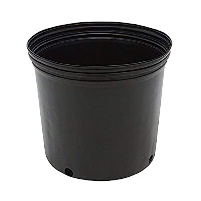3 GALLON NURSERY POTS Outdoor Vegetable Flower Plant Plastic Pot Garden 10 PACK: Garden & Outdoor