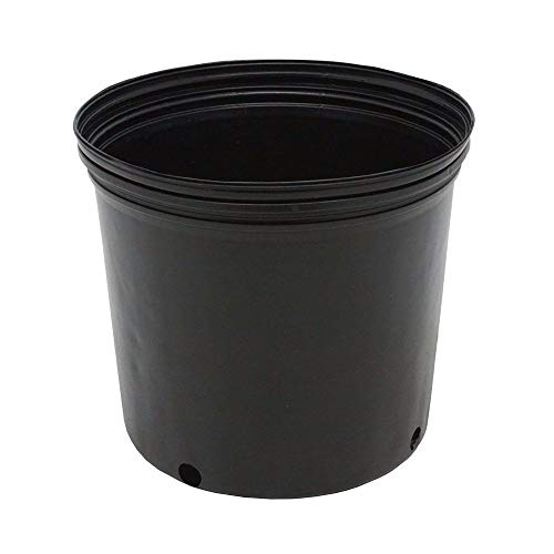 (3 GALLON NURSERY POTS Outdoor Vegetable Flower Plant Plastic Pot Garden 10 PACK)