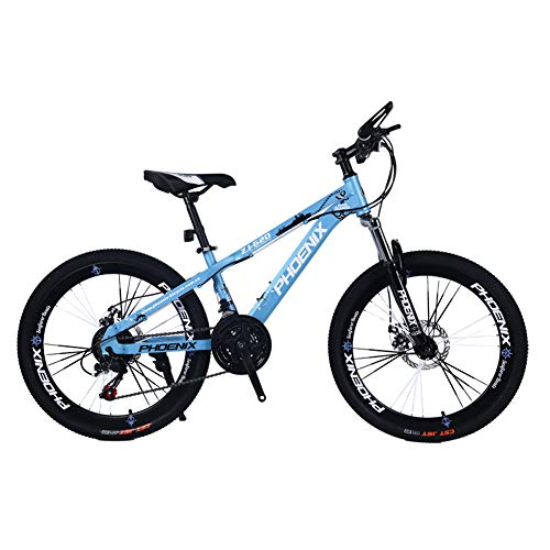 JAD@ Children's Bicycle 24 Inch Variable Speed Mountain Bike 12-17 Years Old Boys and Girls Student Cycling Bicycle (Color : Blue)