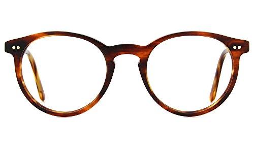 Polo Men's PH2083 Eyeglasses Havana Striped ()