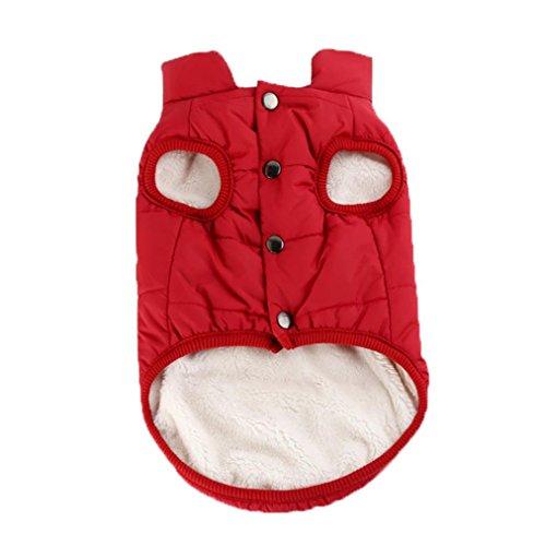 Smdoxi PetCee Dog Jacket Waterproof Fleece Lined Reflective Jacket Dog Loft Jacket Dog Climate Changer Fleece Jacket (M, Red)