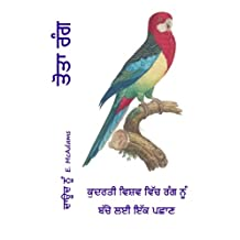 Parrot Colors (in Punjabi): A child's introduction to colors in the natural world.