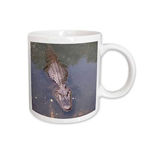 3dRose Alligator Ceramic Mug, 15-Ounce