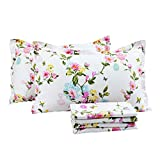 FADFAY Elegant and Shabby Floral Colorful Butterfly 100% Cotton Sheet Set Farmhouse Bedding Hypoallergenic Deep Pocket,4-Pieces Queen Size
