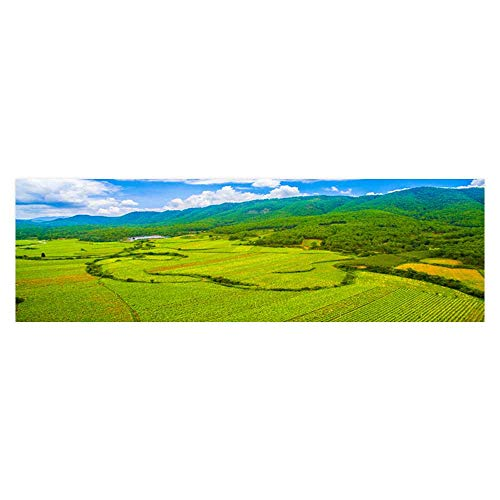 Leighhome Fish Tank Background Ecological Aerial Photography, Valley, Forest, Maitreya Tourism PVC Aquarium Decorative Paper L29.5 x H19.6 (Aerial Map Photography)