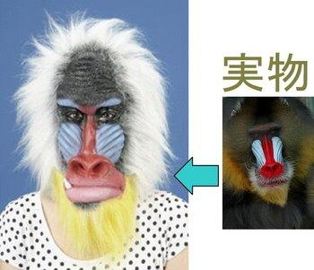 Mandrill Animal - Animal Mask Mandrill