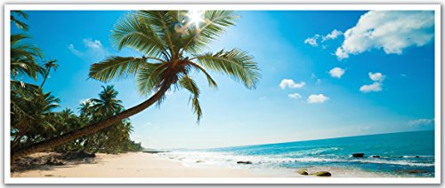 JP London PAN5058 uStrip Sunny Ocean Beach Palm Trees Hig...