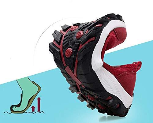 B Nuove A Da Moda Alla Fondo Traspiranti Autunno Donna Un Dimensione Sneaker E yanjing Sneakers Mesh Basse 36 Comode Piatto In Ginnastica He colore Scarpe Yq1pZY