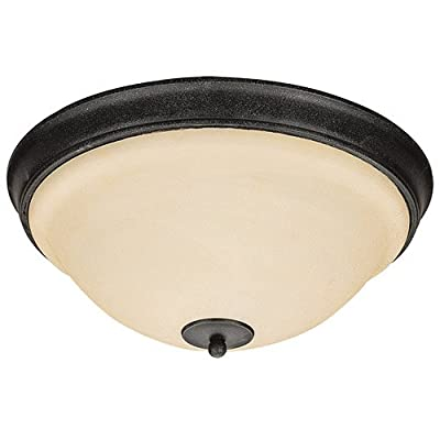 Sea Gull Lighting 75190-07 3-Light Serenity Close-to-Ceiling Fixture, Dusted Alabaster Glass Shade and Weathered Iron