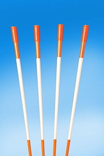 60'' FLUORESCENT ORANGE 100 Driveway Markers, Reflective Snow Stakes, Plow Stakes,5/16'' Thick X 60'' ORANGE Fiberglass Stakes , 100 Pack 5 FT. TALL by PlowStakes.com