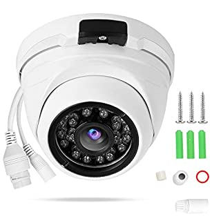BTIHCEUOT Dome Camera 960P IR Wide Angle Vandal-Proof IP Waterproof for Home Indoor Outdoor Security (POE)