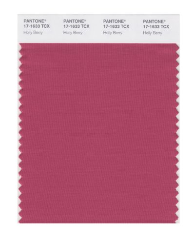 Holly Flat Cards - PANTONE SMART 17-1633X Color Swatch Card, Holly Berry