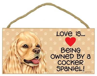 Love is being owned by a Cocker Spaniel (American, tan) 5