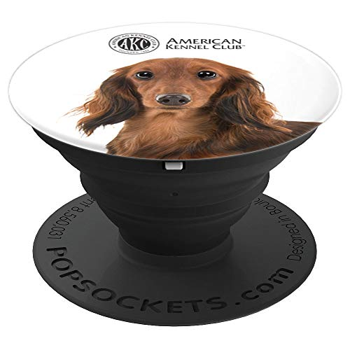 AKC Longhaired Dachshund Photo PopSocket - PopSockets Grip and Stand for Phones and Tablets