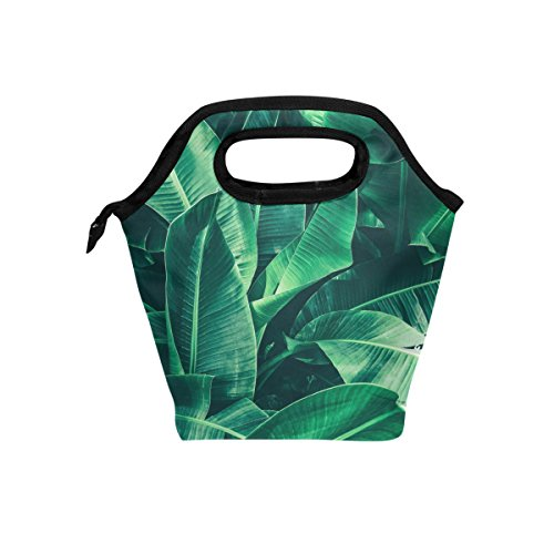 Naanle Tropical Banana Leaf Insulated Zipper Lunch Bag Cooler Tote Bag for Adult Teens Kids Girls Boys Men Women, Palm Foliage Lunch Boxes Lunchboxes Meal Prep Handbag for School (Leaf Lunch)