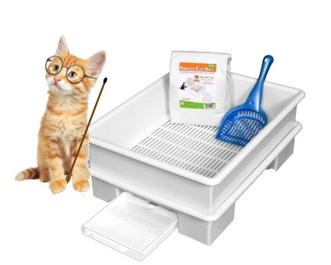SMART CAT BOX Starter Kit - Cat Litter Box - DOES NOT USE EXPENSIVE URINE PADS  sc 1 st  What Cats Need & Litter Boxes with Lids u003c Litter Boxes u0026 Supplies | What Cats Need Aboutintivar.Com