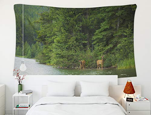 Shorping Dorm Tapestry,Elk Deer,Tapestry, 80x60 Inch Wall Art Tapestry for Home Decoration Two elk Calves Emerge from The Forest and Drink from a Forest Lake in Banff National Park Alberta ()