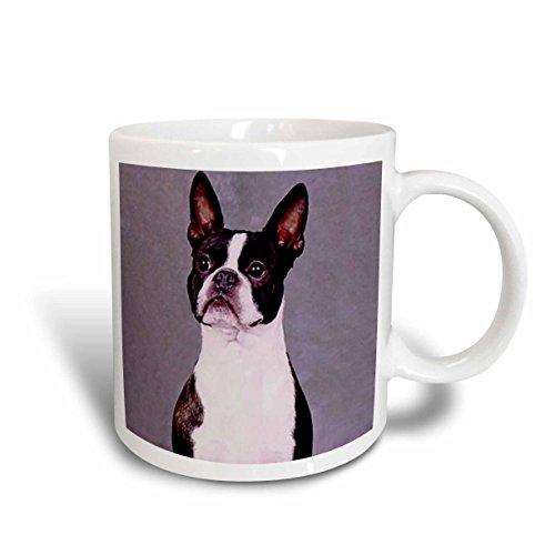 Boston Terrier Plates (3dRose Boston Terrier Mug, 11-Ounce)