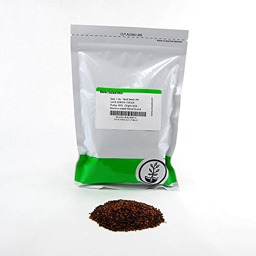 Basic Salad Mix Microgreens Seeds: 1 Lb - Non-GMO Seed Blend: Broccoli, Kale, Kohlrabi, Cabbage, Arugula, ()