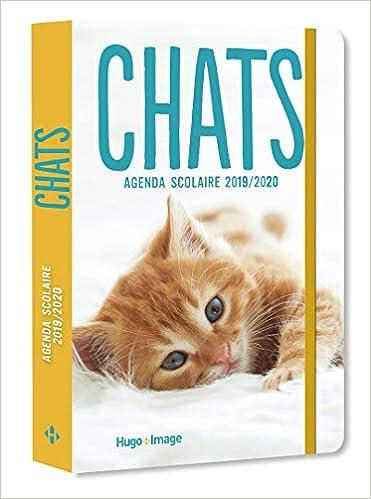 Agenda scolaire Chats: Amazon.es: Hugo Image: Libros en ...