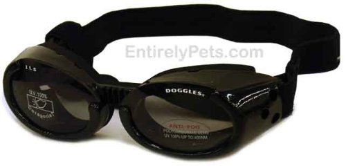 - Doggles ILS Interchangeable Lens System Metallic Black Frame/Smoke Lens, Sizes: Extra Small