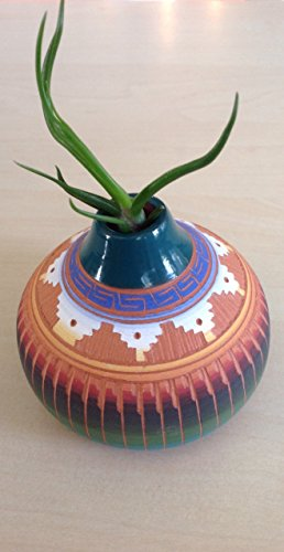 tillandsia-air-plant-in-handcrafted-native-american-pottery-by-theresa-tom-signed-by-the-artist-she-