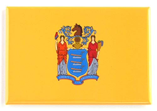 New Jersey State Flag Fridge Magnet (2 x 3 inches)
