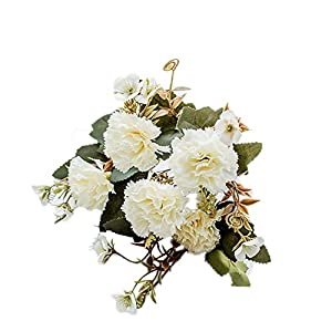 HsgbvictS 1Pc 5 Branches Colorful Artificial Carnation Simulation Flower Home Decor Gift - White 62