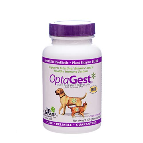 In Clover OptaGest Digestive Aid Dog & Cat Supplement, 3.5 oz